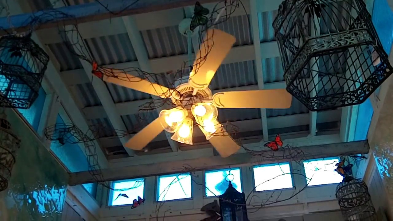 Fta videos florida ceiling fan sightings 2012 youtube aloadofball Gallery