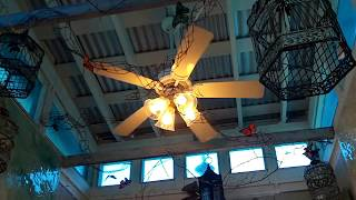 Quick Clips of Ceiling Fans From my Florida Trip (OLD Videos)