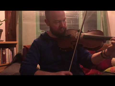Fergal Scahill's fiddle tune a day 2017 - Day 338! The Geese in the Bog