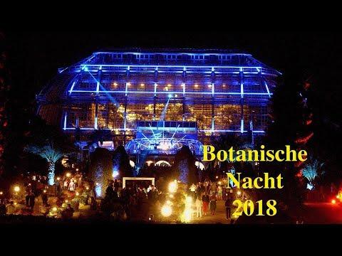 Botanische Nacht 2018