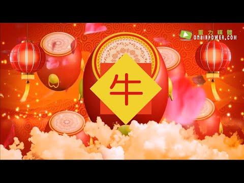 Ep03 : 2019年12生肖運程 - 牛