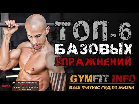 ФРЭНК МЕДРАНО. 6 БАЗОВЫХ упражнений для НАЧИНАЮЩИХ с собственным весом в КАЛИСТЕНИКЕ #GymFit INFO
