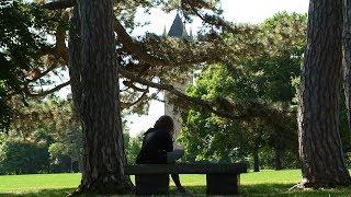Iowa State campus through trees