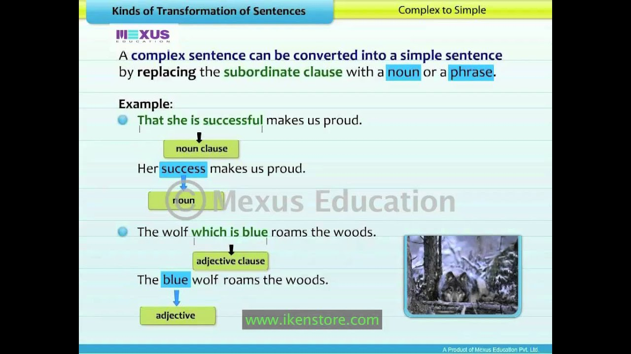 kinds of transformation of sentences