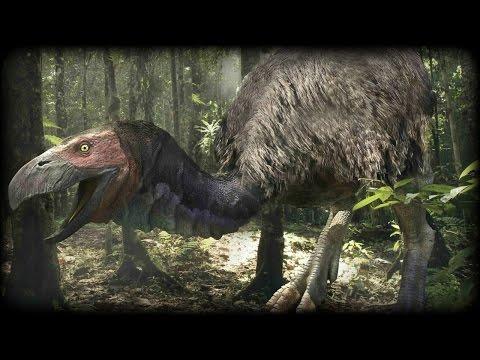 Prehistoric Beasts - Diatryma