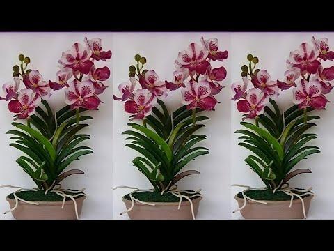DIY Bunga Anggrek