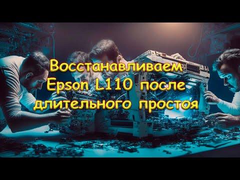 Восстанавливаем Epson L110 после длительного простоя.