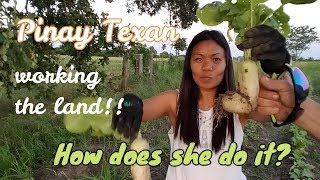 The SHOCKING progress of a Filipinas garden in Texas!! Work the Land
