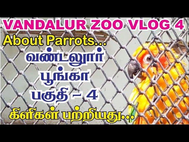 vandalur zoo vlog in tamil - 4 | Arignar anna zoological park chennai