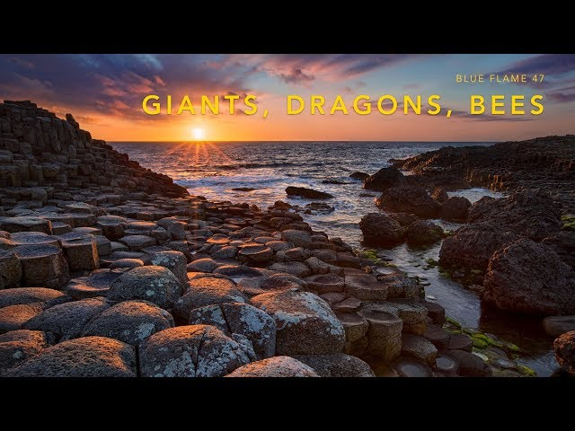 Giants Dragons Bees (2019)