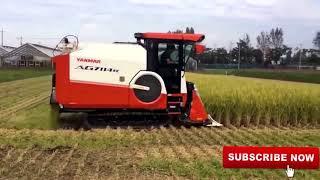 combine harvester YANMAR / alat panen padi