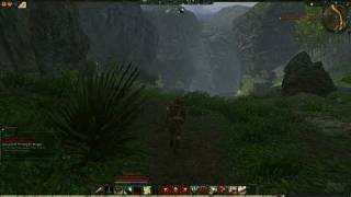 Age of Conan: Hyborian Adventures PC Games Gameplay -