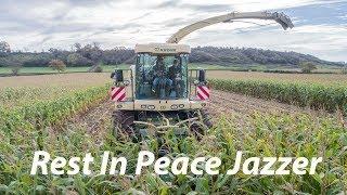 In Memory Of Jazzer- Richard Churchill
