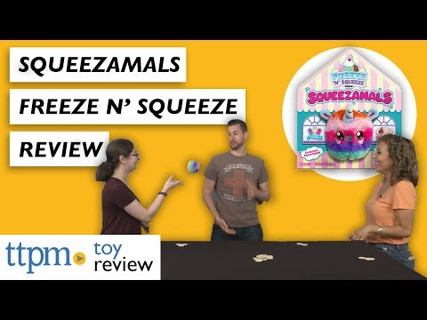 Squeezamals Freeze 'N' Squeeze Game Review From Big G Creative