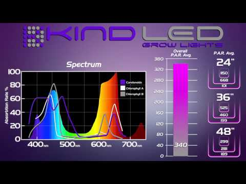 Kind Led Grow Light Review Vs Hps And Other Led Grow