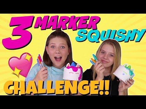 THREE MARKER SQUISHY CHALLENGE || Taylor and Vanessa