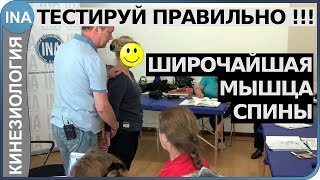 Мышечное тестирование. Широчайшая мышца спины. Обучение кинезиологиии в Германии