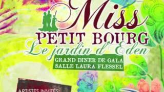 Spot - Miss Petit-Bourg 2011