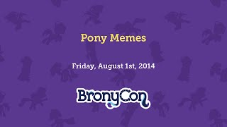 Pony Memes