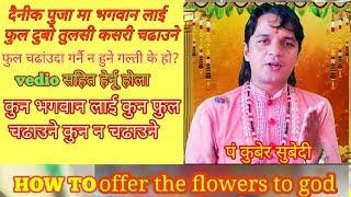 फुल चढांउदा गर्नै न हुने गल्ती के हाे?दैनीक पुजामा फुल यसरी चढाउनुहाेस धन धान्य सुख काे कैले कमी हुन