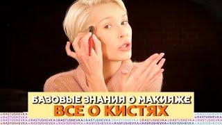 Базовые знания о визаже   Все о кистях для макияжа