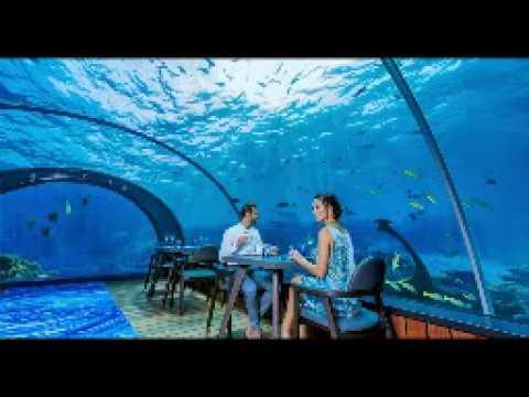 The First Underwater Restaurant Europe YouTube - Take a look inside europes first underwater restaurant