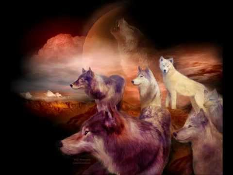 Brothers In Arms    - Dire Straits  -Save the wolves thumbnail