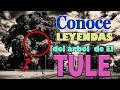 Video de El Tule