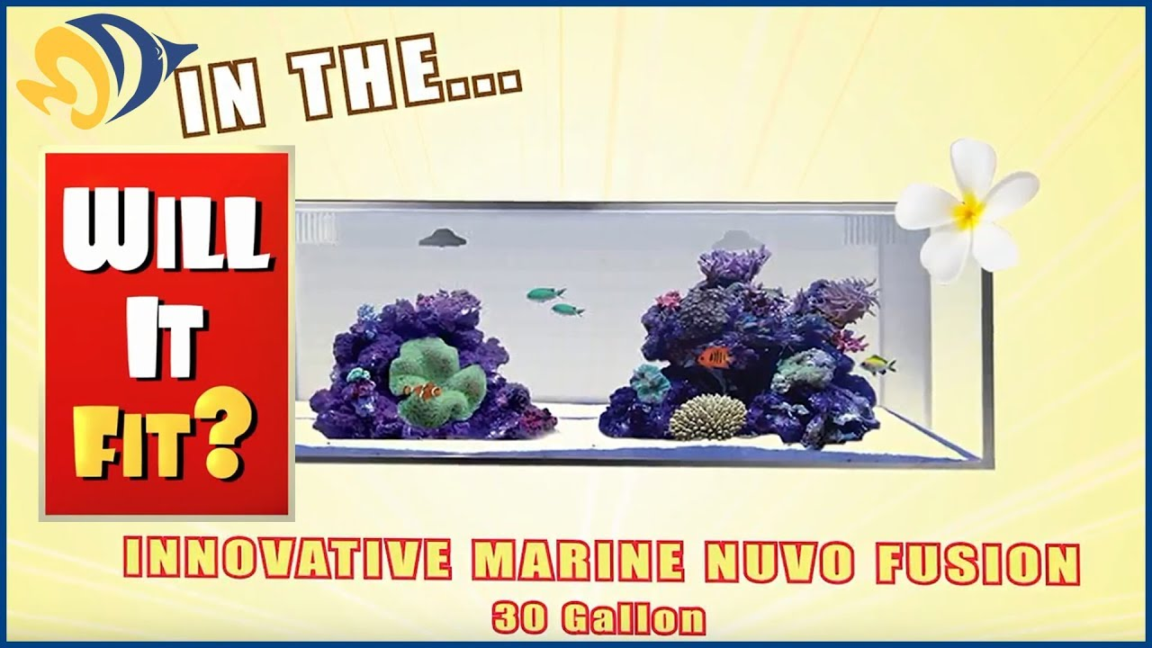 Will It Fit? - Innovative Marine NUVO Fusion Micro 30L Aquarium Thumbnail