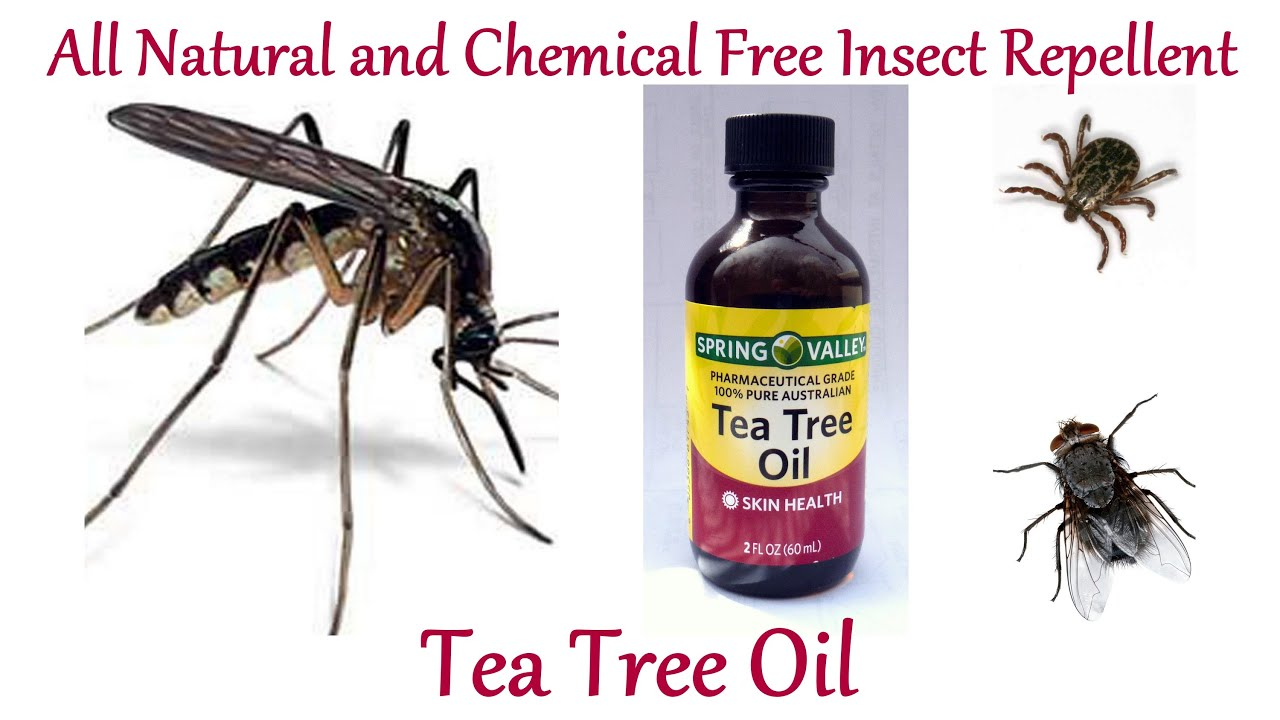 How to Make All Natural, Chemical Free Insect Repellent