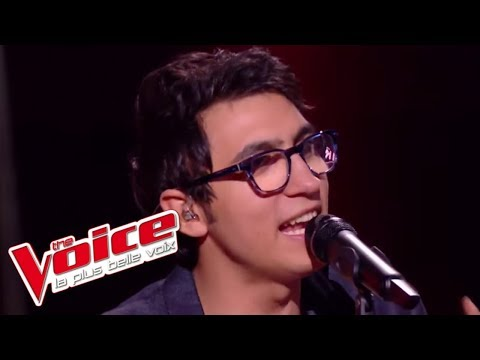 Vincent Vinel et Calogero - « Je joue de la musique » | The Voice France 2017 | Live