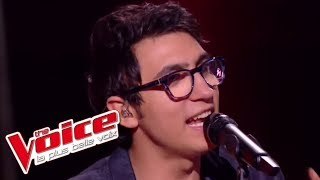 Vincent Vinel et Calogero - « Je joue de la musique » | The Voice France 2017 | Live