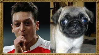 20 Footballers Who Look Like Dogs