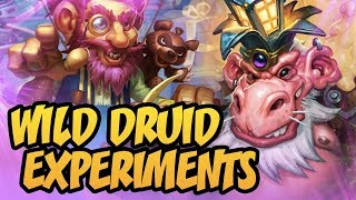 Wild Druid Experiments | Rise Of Shadows | Hearthstone