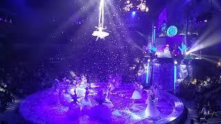 Шоу «Тайна Новогодней звезды» / Цирк Гии Эрадзе / Премьера в Екатеринбурге / 23 декабря 2017 года
