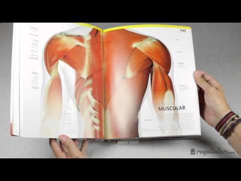 """""""el-gran-libro-del-cuerpo-humano""""---regalador.com"""
