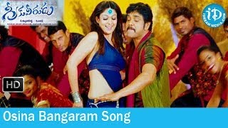 Gambar cover Greeku Veerudu Movie Songs - Osina Bangaram Song - Nagarjuna - Nayantara - S Thaman Songs