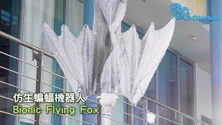 仿生蝙蝠機械人 |  Bionic Flying Fox