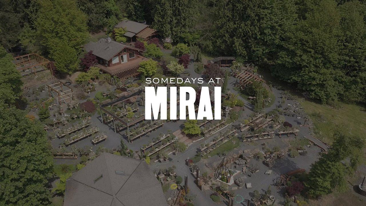 Somedays at Mirai: June