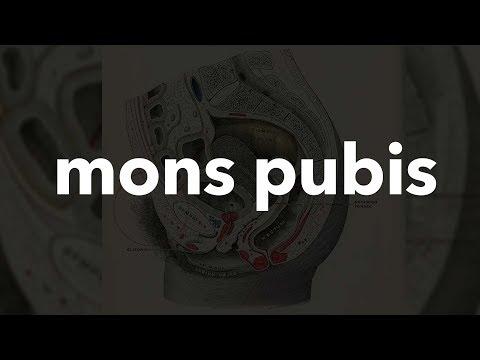 Mons pubis #9
