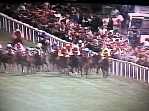 Reference Point 1987 Derby