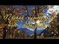 Пусть Осень тебя убаюкает нежно... Осенние пожелания друзьям