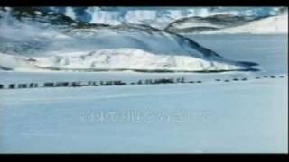 『皇帝ペンギン』(こうていぺんぎん、La Marche de l'empereur)は、コ...