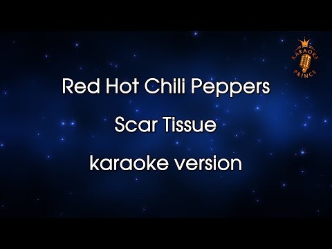 Red Hot Chili Peppers - Scar Tissue  (Female vocal version)