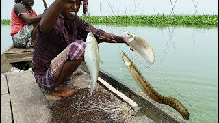 Primitive Technology - Unbelievable Fish Catching In River। Catch A Lot of Fish