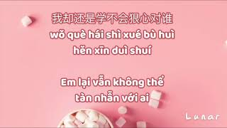 Download Mp3 ♪ Karaoke 🎹 Nan Ren Nv Ren | 男人女人 | Nam Nhân Nữ Nhân || Lyrics ⋆ Pinyin ⋆ Vietsu