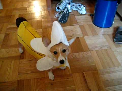 Bess Banana Costume & Bess Banana Costume - YouTube