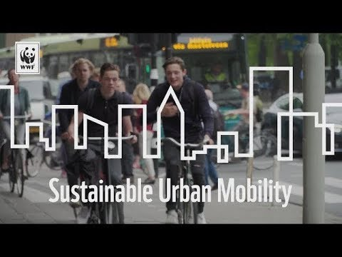 Cities Rise to the Challenge – Sustainable Mobility