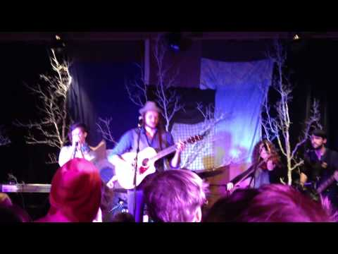 The Forest (Live) - Chris Molitor