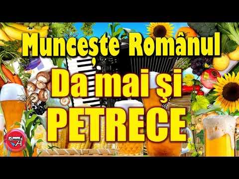 Download MUNCESTE ROMANUL, DAR MAI SI PETRECE - PAULA DE LA SLATINA - MUZICA DE PETRECERE